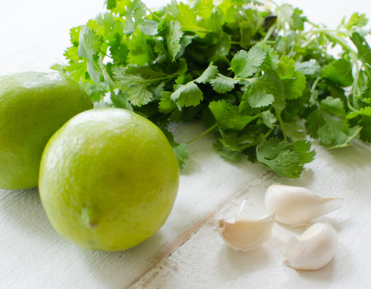 Lime, cilantro and garlic, tomatillo salsa